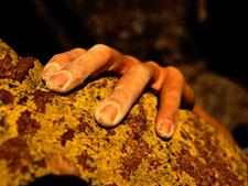 Close-up of climbers hand. AllPosters.com