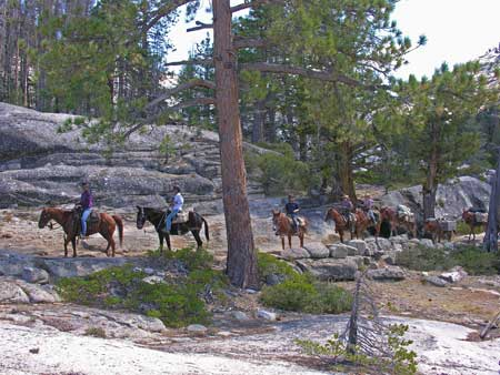 Saddletrip On Yosemites Merced River Trail. Courtesy of DNC