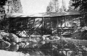 Covered bridge. Wawona bridge construction project.