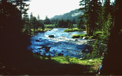 Tuolumne River Lyell Fork. Copyright DH Hubbard