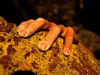 Climber hand close up. Bill Hatcher AllPosters.com