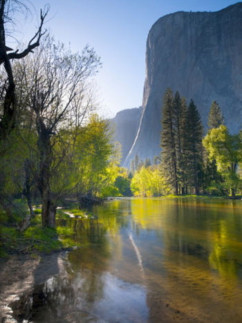 A later afternoon sun warms El Capitan in the spring. AllPosters.com