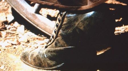 Pioneer Button shoe