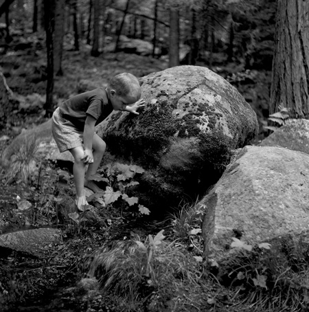 Exploring Yosemites Creeks