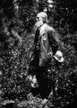 John Muir In Yosemite Valley