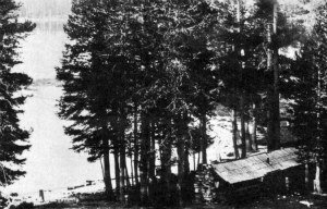 Murphy's Cabins at Tenaya Lake