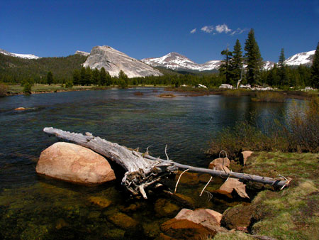 Tuolumne Meadows with lembert Dome and Mount Dana
