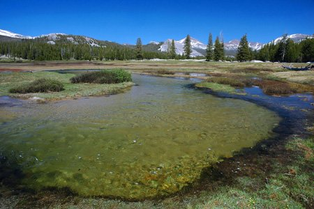 Tuolumne Meadows Tioga Road, Yosemite