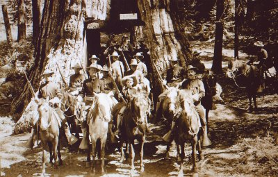 US Cavalry at the Wawona Tunnel Tree