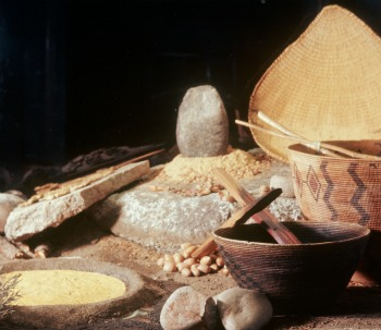 How the Yosemite Indians prepared their food