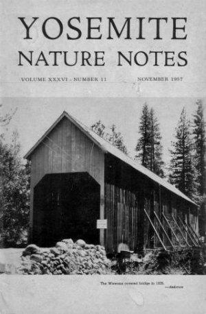 Covered Bridge. Wawona Bridge cover, Yosemite Nature Notes November 1957