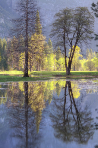 Yosemite Valley Reflections. AllPosters.com